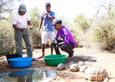 Centre per a la Recuperació de la Fauna en Mangily